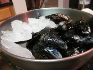 keep mussels chilly!