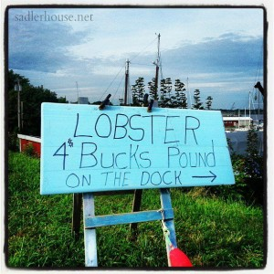 Lobster for $4/lb. - Summer in Maine