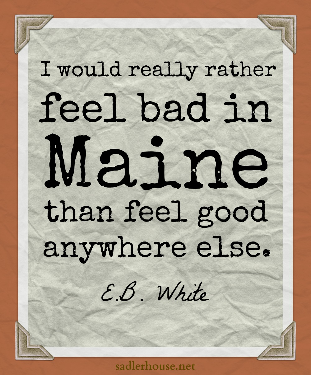 Feel Good Quotes E.bwhite Said Sadler House