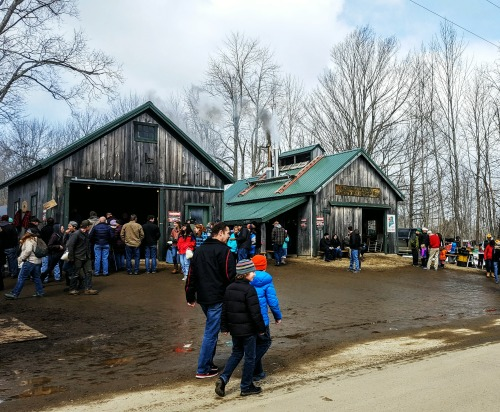 Maine Maple Sunday - Maine Spring Fun